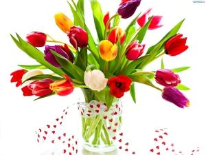 140470_bukiet-kolorowych-tulipanow-wstazka-serduszka