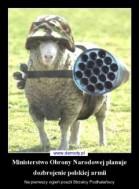 ministerstwo-obrony-narodowej-planuje-dozbrojenie-polskiej-armii